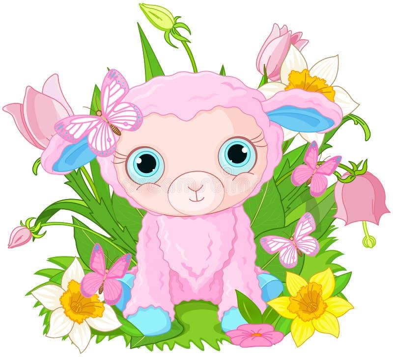 Cute cub sheep vector illustration