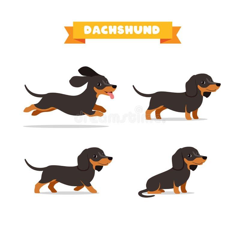 Free Cute Dachshund Dog Animal Pet With Many Pose Bundle Set Stock Photo - 193956070