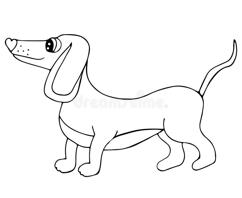 Download Cute Dachshund Dog Isolated On The White Background Stock Vector