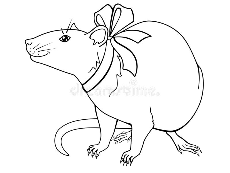 Cute decorative rat with a festive bow - linear vector illustration for coloring. The symbol of the Chinese New Year 2020. Is the rat royalty free illustration
