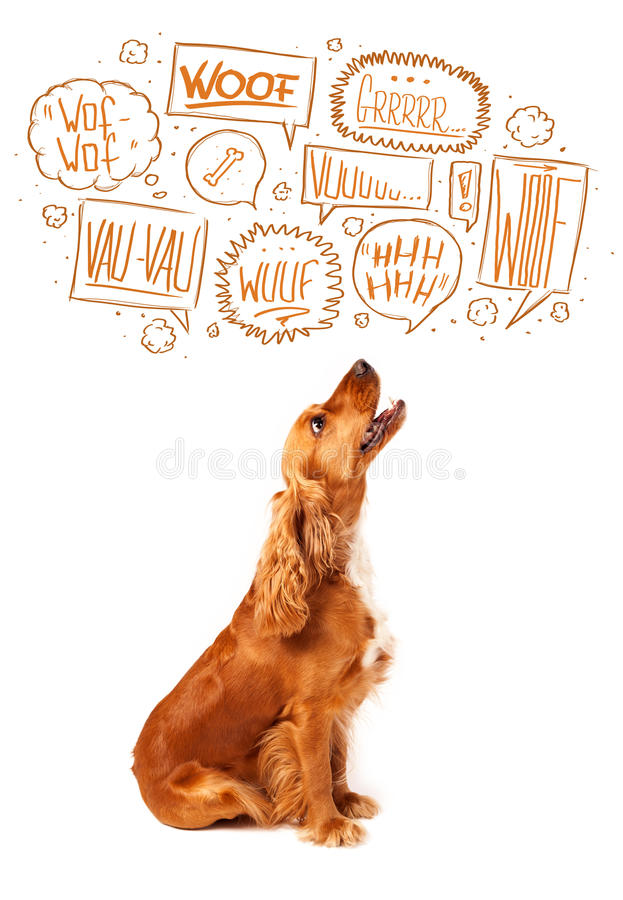 Cute dog with barking bubbles. Cute cocker spaniel with barking speech bubbles above her head vector illustration