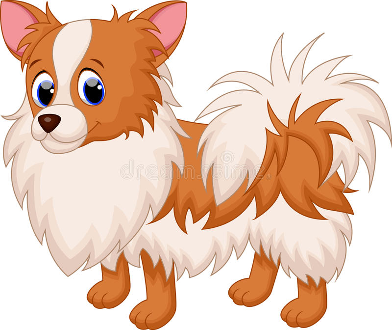 Cute dog cartoon. Illustration of cute chihuahua dog cartoon vector illustration