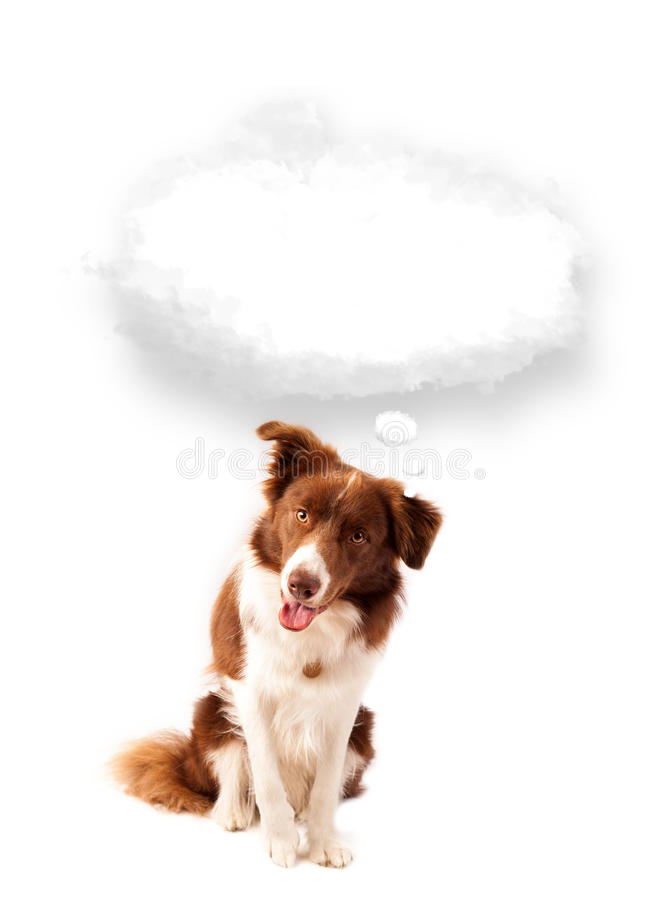 Download Cute Dog With Empty Cloud Bubble Stock Image - Image: 33303605
