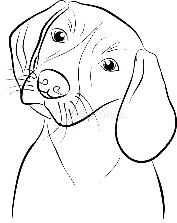 Download Cute dog - freehand stock vector. Image of white, attentive - 24453703