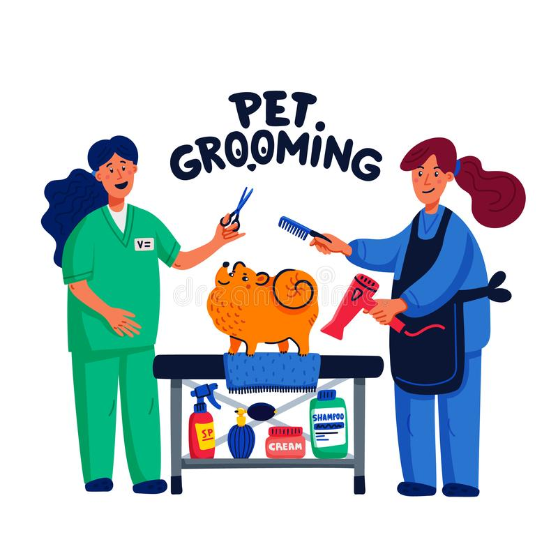 Cute dog at groomer salon. Two young girls shearing and combing spitz. Dog care, grooming, hygiene, health. Pet shop. Accessories. Flat style vector royalty free illustration