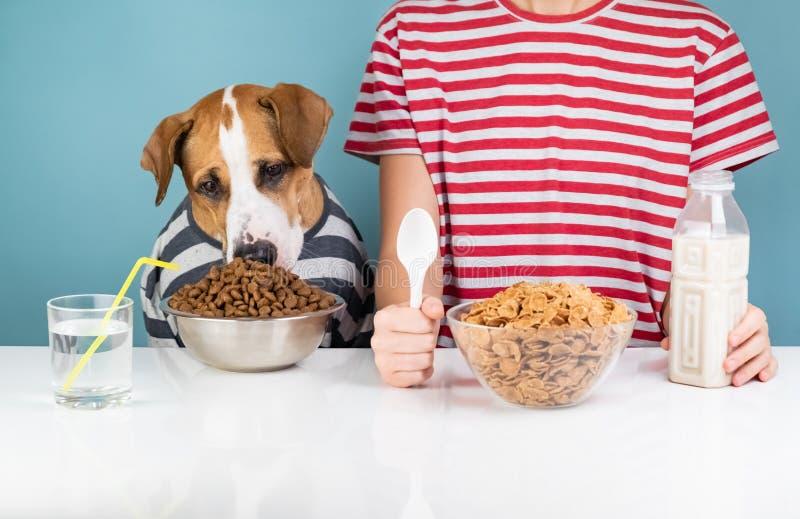 Cute dog and human having breakfast together. Minimalistic illus stock image