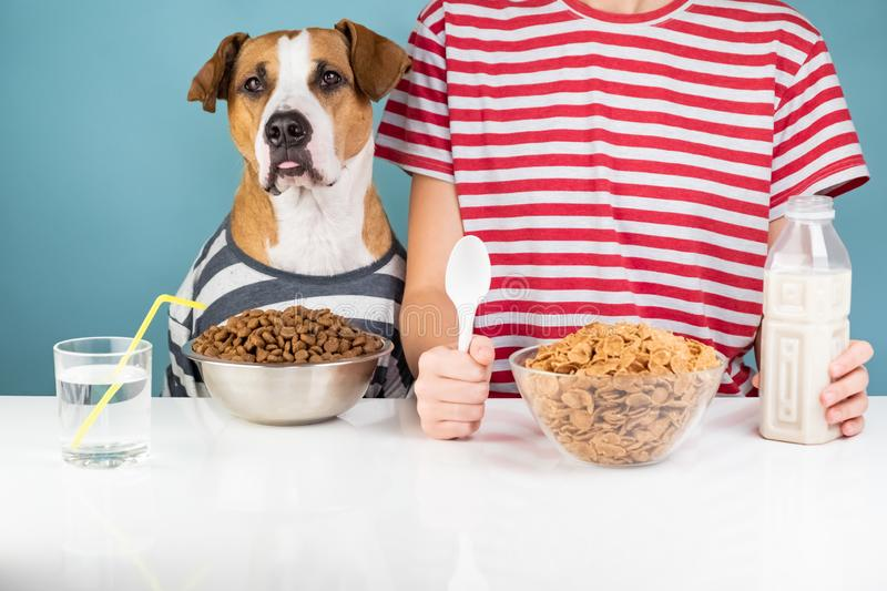 Cute dog and human having breakfast together. Minimalistic illus royalty free stock photography
