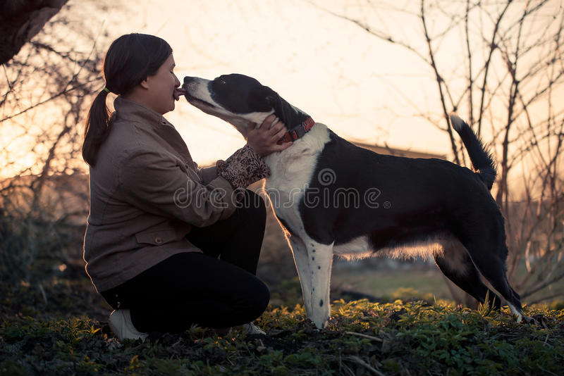 Cute dog kissing his mistress, outdoors royalty free stock image