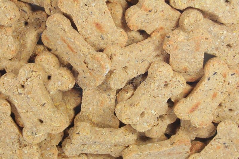 Cute Dog Snacks Shaped into a Bone stock photos