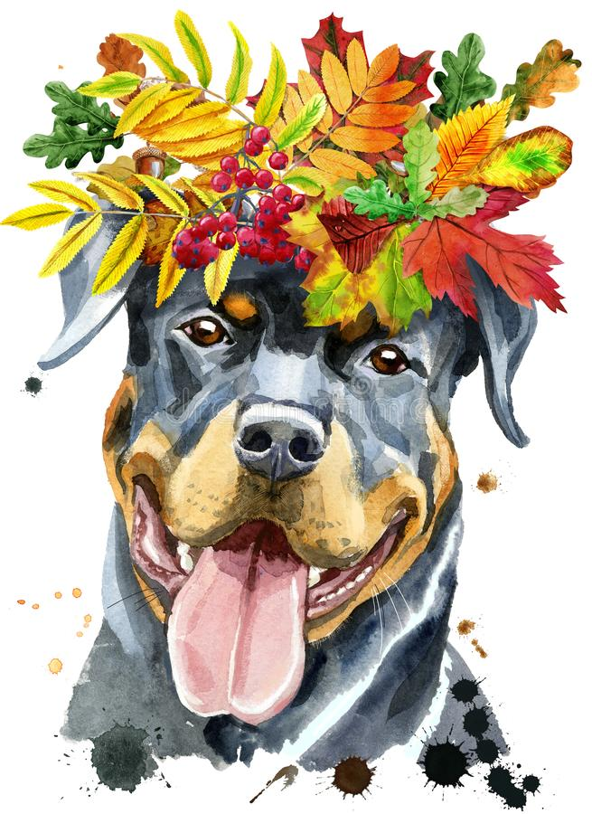Watercolor portrait of rottweiler with wreath of autumn leaves stock image