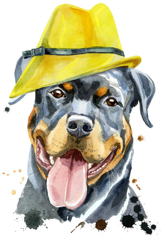 Watercolor portrait of rottweiler in yellow hat royalty free stock photo