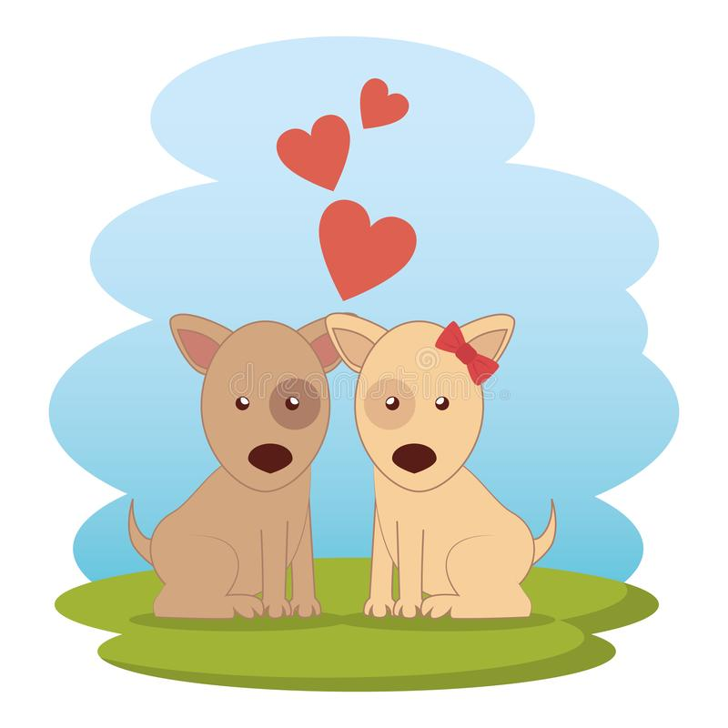 Cute dogs couple on grass vector illustration