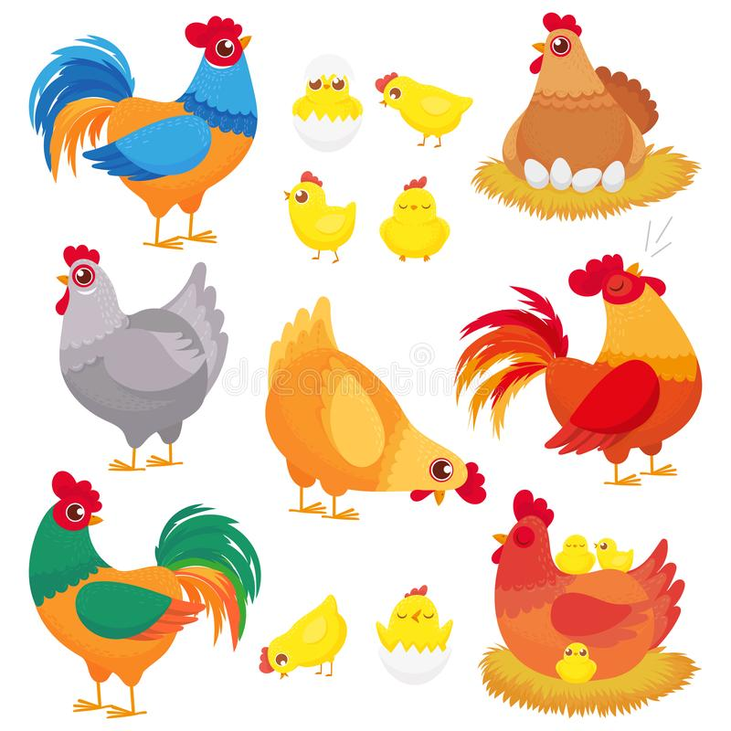 Cute domestic chicken. Farm breeding hen, poultry rooster and chickens with chick. Hens cartoon vector set vector illustration