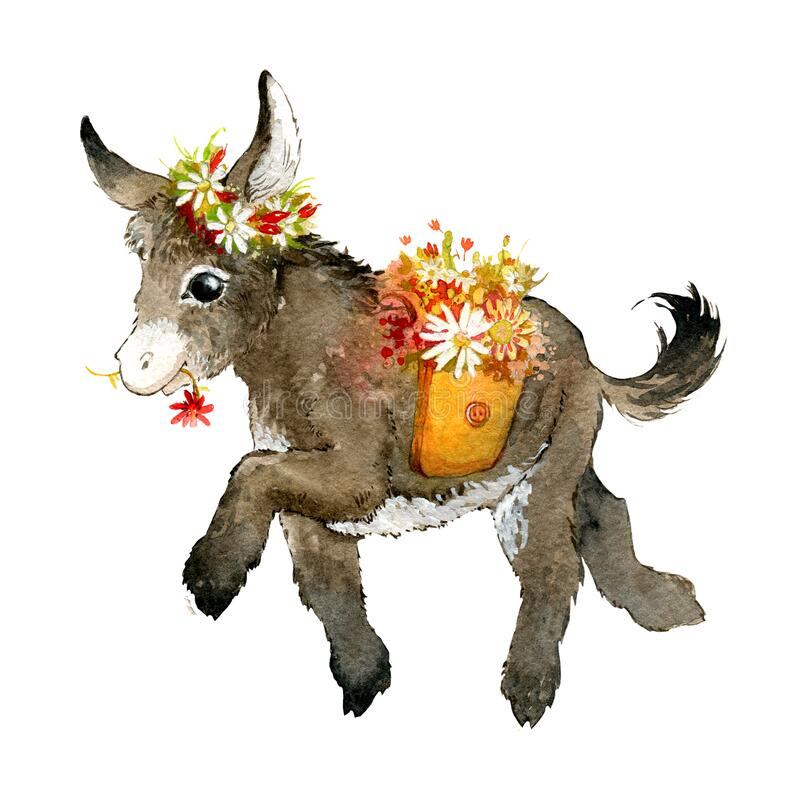 Free Cute Donkey, Small And Funny. The Donkey Carries Bags Of Flowers, He Has A Wreath Of Flowers. Watercolor Illustration Royalty Free Stock Image - 183537346