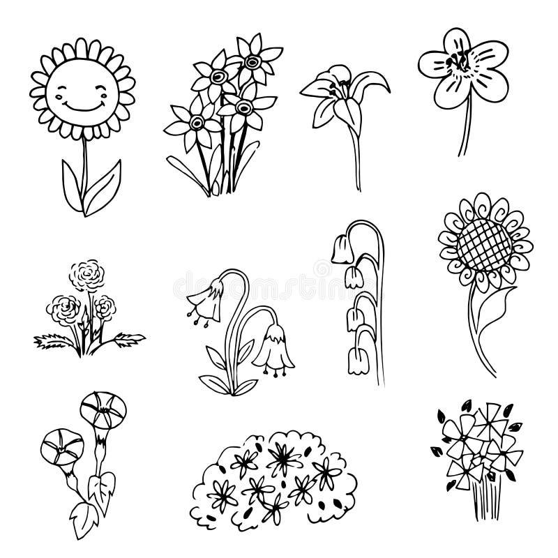 Cute Flower Line Drawing : Cute doodle flower on black line drawing sketch vector