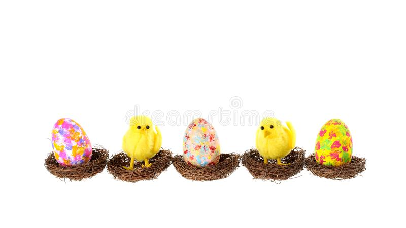 Cute Easter banner with three colorful painted eggs and two decorative chickens sitting in birds nests, isolated on a white. Background royalty free stock images