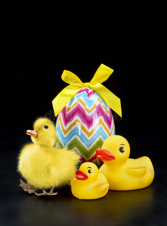 Cute Easter Duck. Cute little Easter duck and easter eggs with room for your type stock image