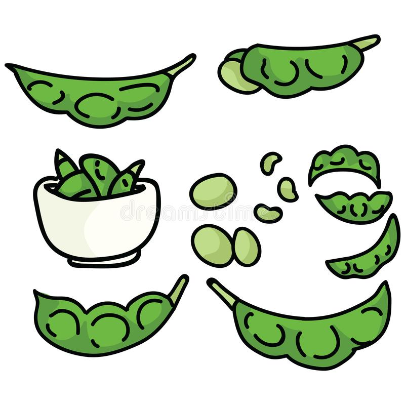 Cute edamame soy bean illustration. Hand drawn Japanese light snack clipart. royalty free illustration