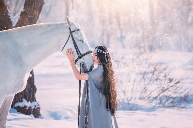 Cute elf princess in long gray cloak and vintage dress, girl with long black wavy curly hair stands next to white. Gorgeous hourse, model poses for camera in royalty free stock photos