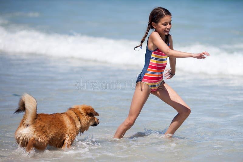 Cute Elo puppy runs in the sea after a pretty girl. Cute Elo (German dog breed) puppy runs in the sea water after a pretty young girl stock photos
