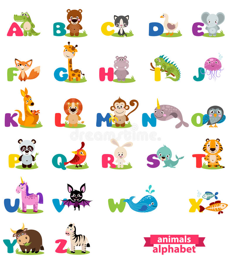 Cute english illustrated zoo alphabet with cute cartoon animal. Vector illustration for kids education, foreign language study royalty free illustration