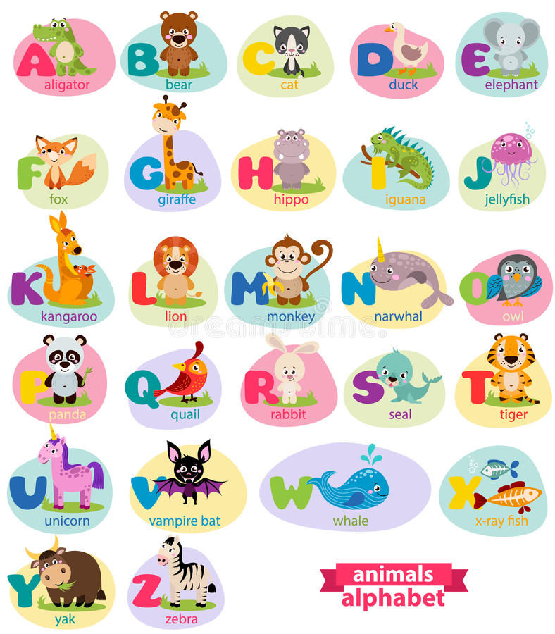 Cute english illustrated zoo alphabet with cute cartoon animal. Vector illustration for kids education, foreign language study vector illustration