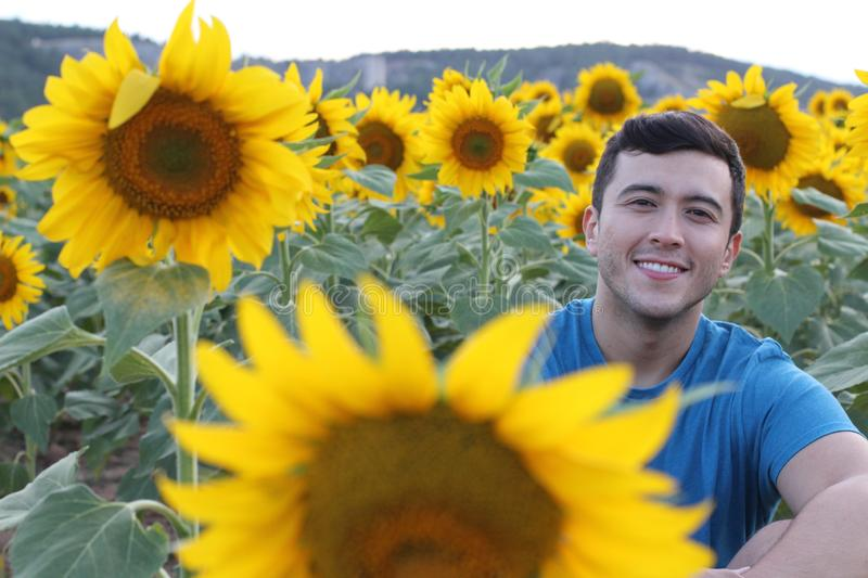 Cute ethnic man in sunflower field royalty free stock images