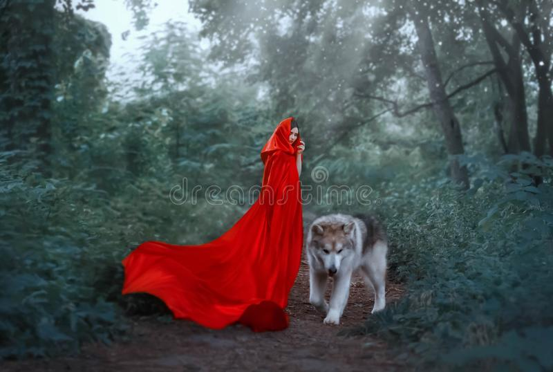 Cute fantastic image of fairy-tale character, mysterious dark-haired girl with long flying waving scarlet red bright royalty free stock image