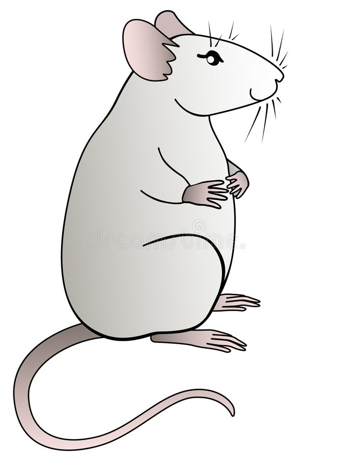A cute fat gray rat is sitting. The symbol 2020  vector illustration