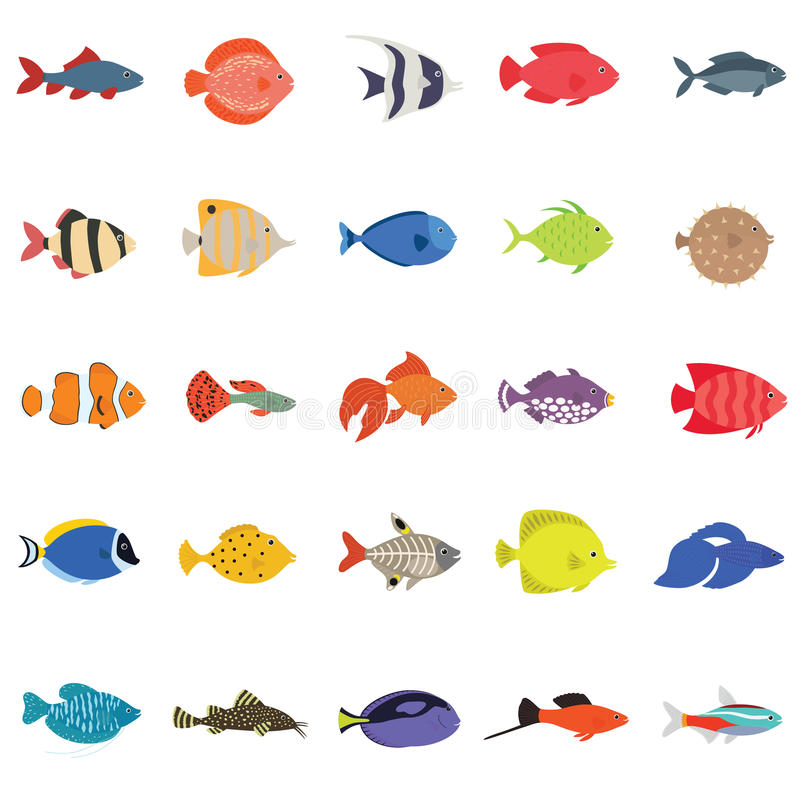 Cute fish vector illustration icons set. Tropical fish, sea fish, aquarium fish. Cute fish vector illustration icons set. Flat style vector illustration. icons stock illustration