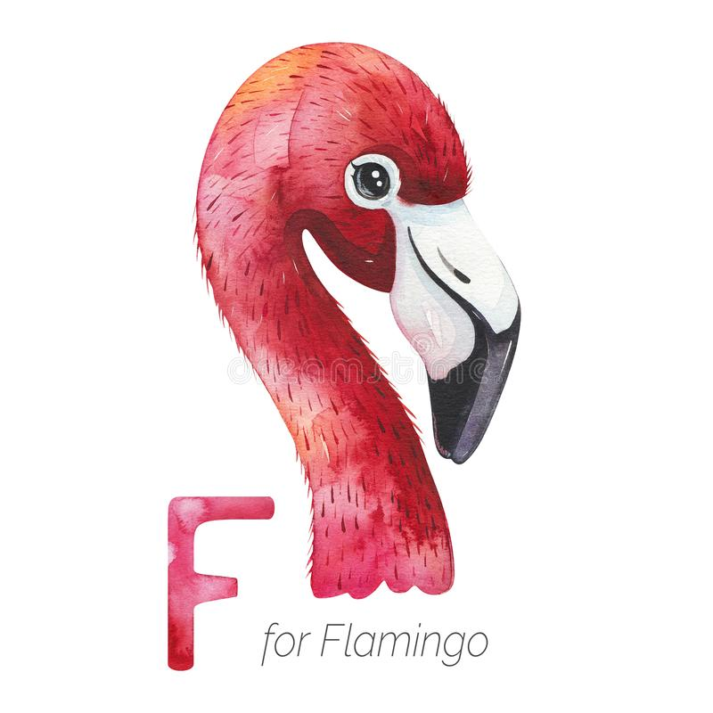 Cute Flamingo Bird per lettera F royalty illustrazione gratis