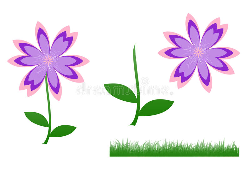 Cute flower, pink-purple-violet. Illustration of cute flower, pink-purple-violet flower and green leaves standing and green grass isolated on white background vector illustration