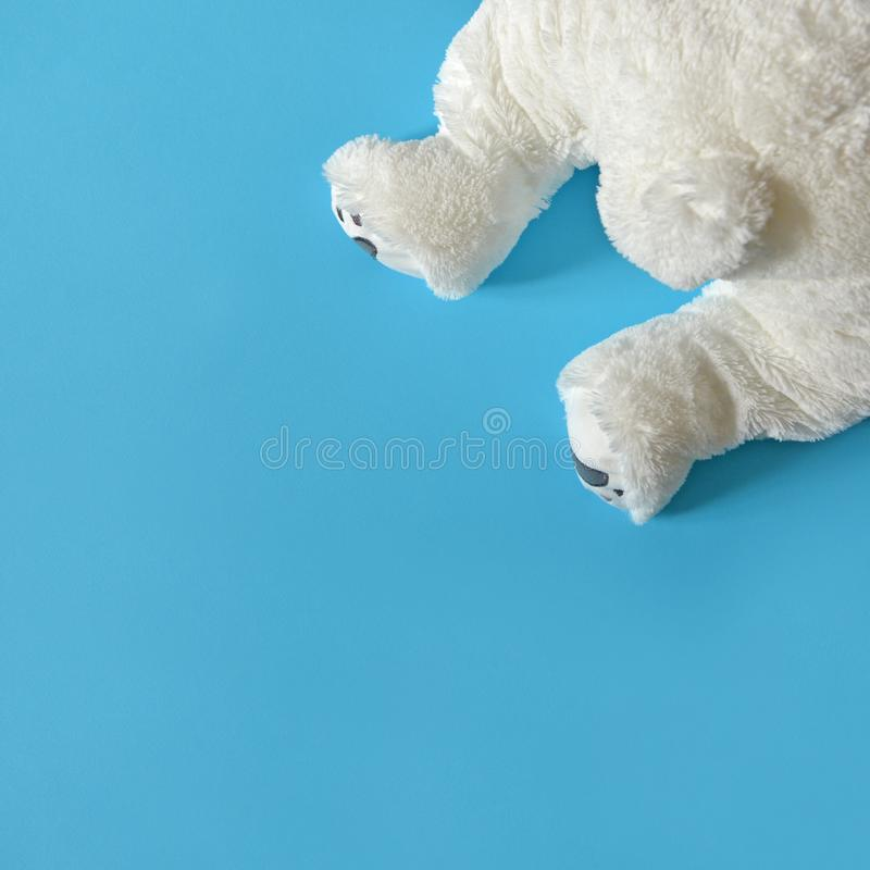 Cute fluffy bear legs peaking from corner on white background - Top view stock image