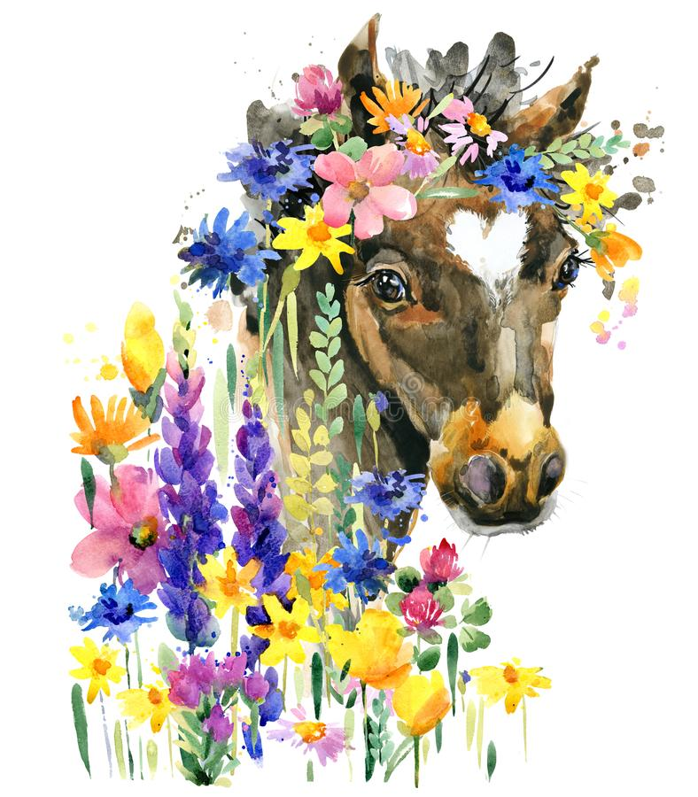 Cute foal watercolor illustration. farm animal. Cute foal watercolor illustration. little horse in the summer flowers. farm animal royalty free illustration