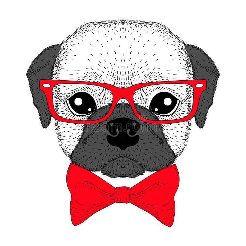 Cute french bulldog boy portrait with bow tie, glasses. Hand drawn dog face, anthropomorphic fashion pug illustration for vector illustration