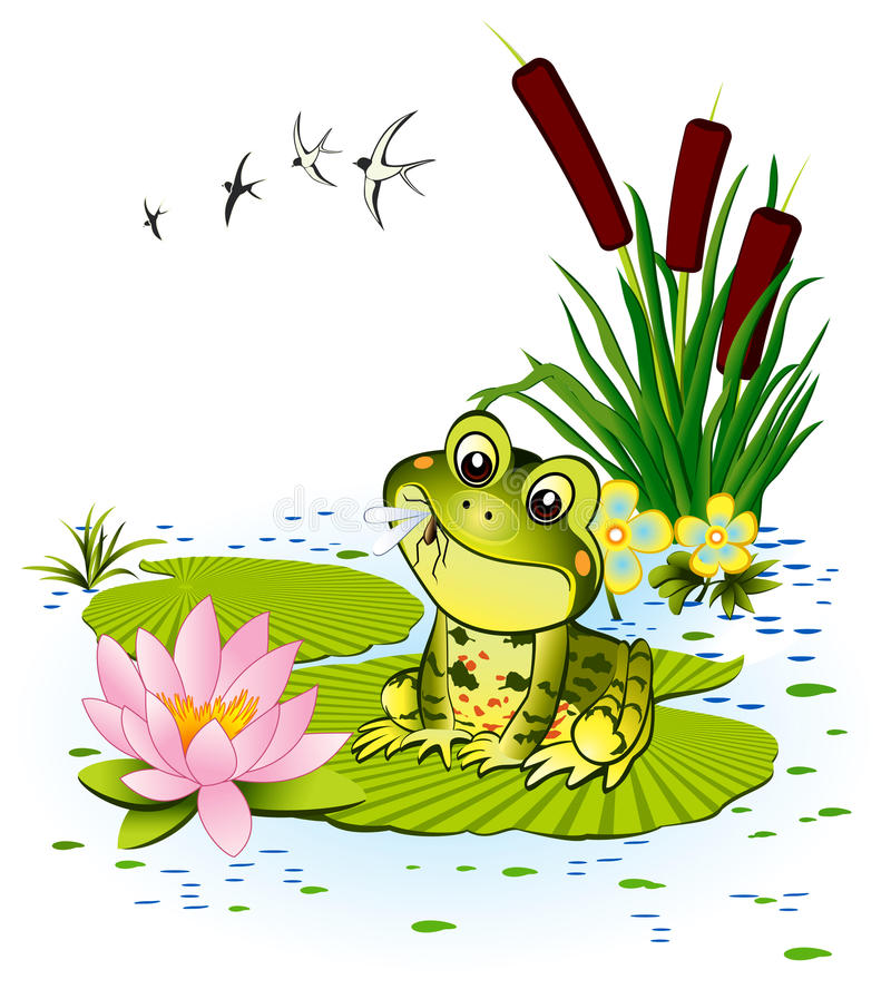 Cute frog. With a mosquito - vector illustration