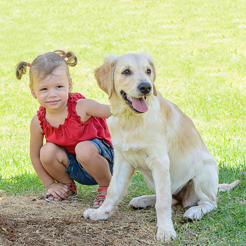 Cute girl with a dog royalty free stock images