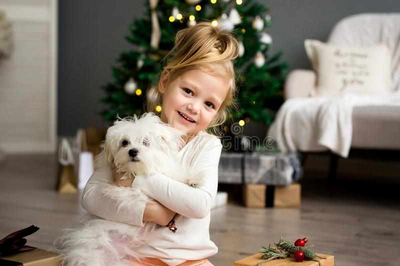 Beautiful girl with dog sitting near the Christmas tree. Merry Christmas and Happy Holidays. stock photos
