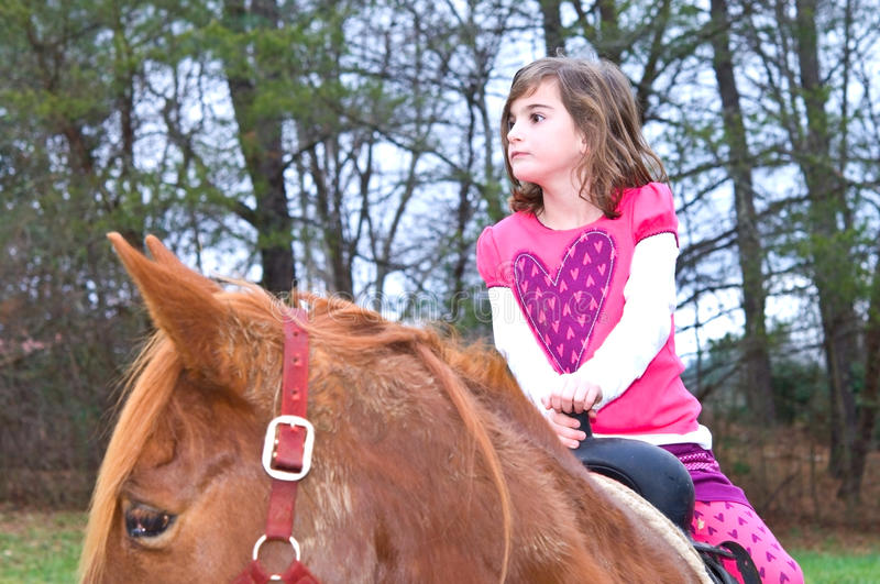 Download Cute Girl on a Horse stock image. Image of interested - 12296227