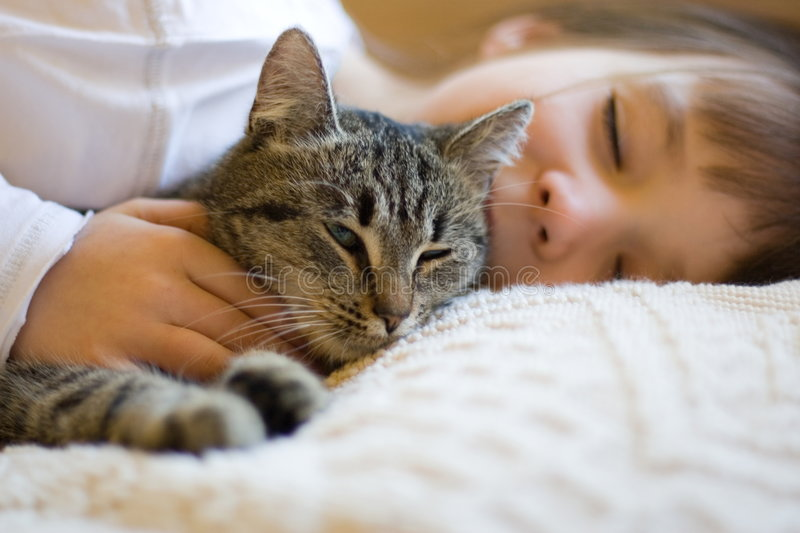 Cute girl napping with cat stock photos