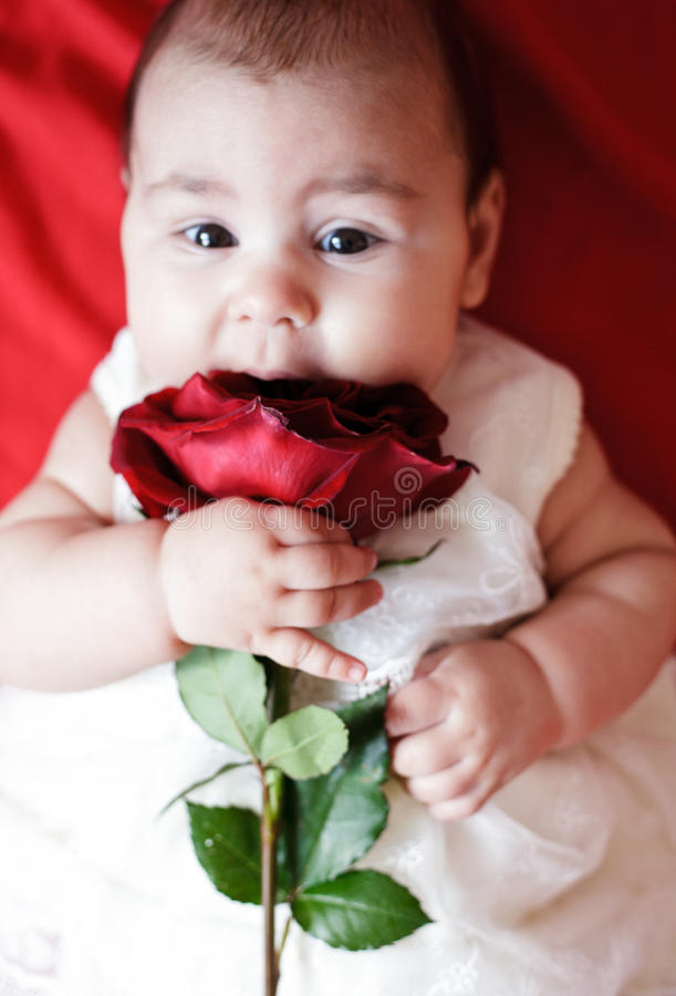 Download Cute girl with red rose stock image. Image of background - 23754827
