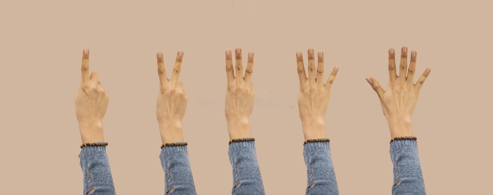 Cute girl showing one to five fingers count signs isolated on background with Clipping path included. Communication gestures stock images