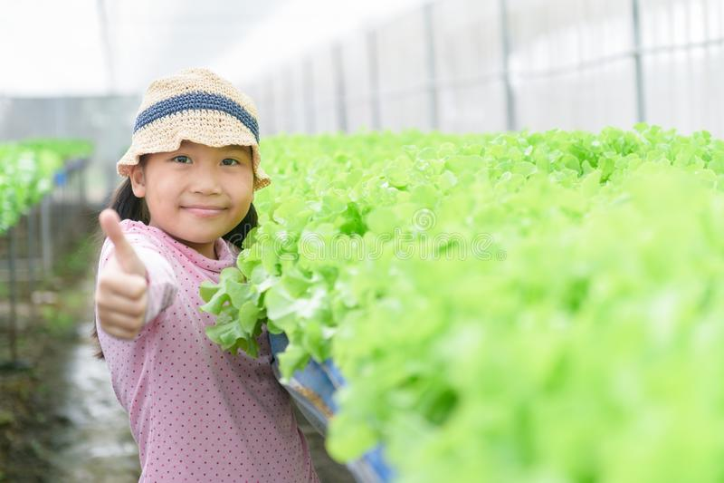 Cute girl showing thumb up at organic vegetable farm stock photos