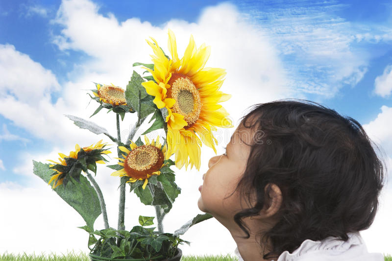Cute girl with sunflowers stock image