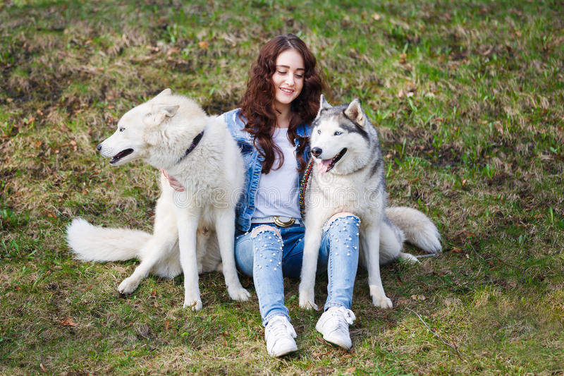 Cute girl with two husky dogs stock photo