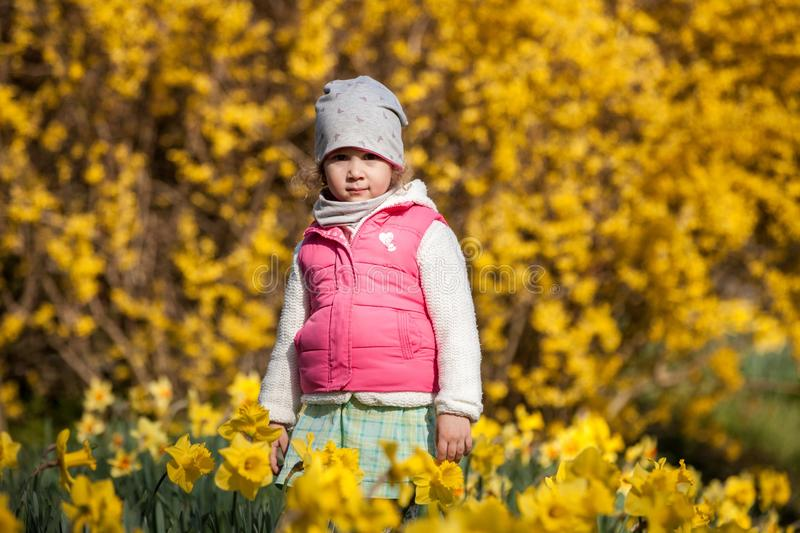 Cute girlon a background field with yellow flowers, happy cute and beautiful kid having fun with yellow flowers in spring in park,. Cute girlon a background royalty free stock photo