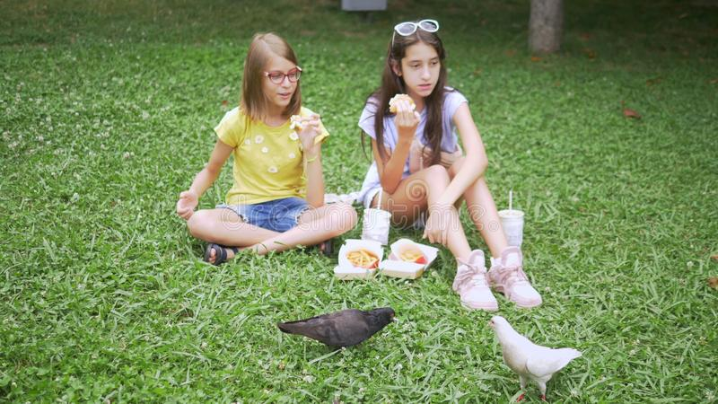 Cute girls sit on the grass in the park and feed the birds fries.  stock photography