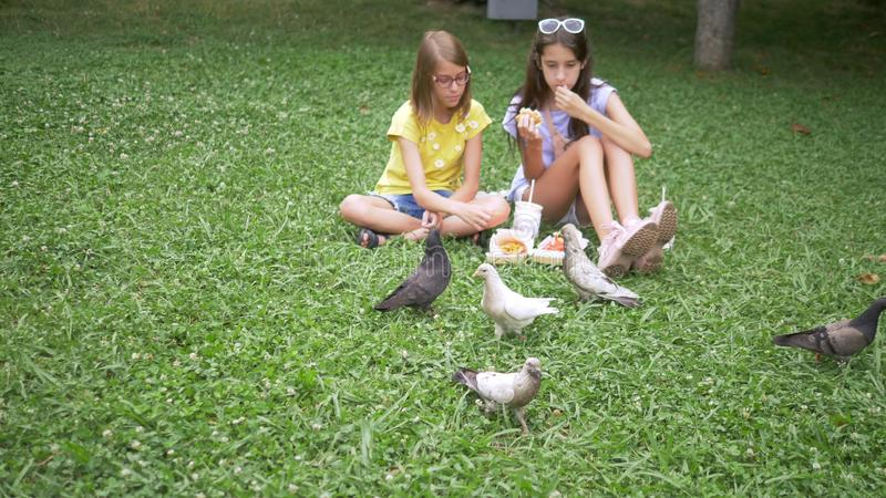Cute girls sit on the grass in the park and feed the birds fries.  royalty free stock photo