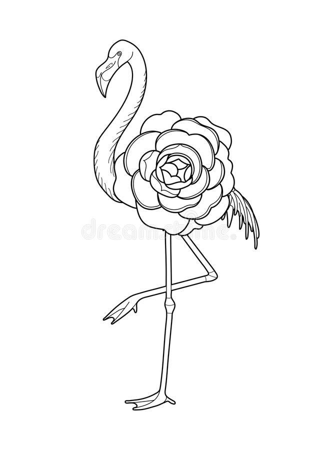 Cute graphic flamingo. In the side view with big camellia flower over its body. Pretty exotic bird isolated on white background. Coloring book page design for royalty free illustration