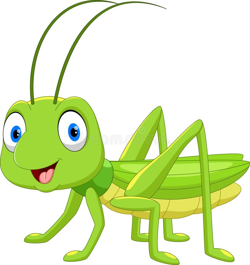 Cute grasshopper cartoon. Isolated on white background royalty free illustration